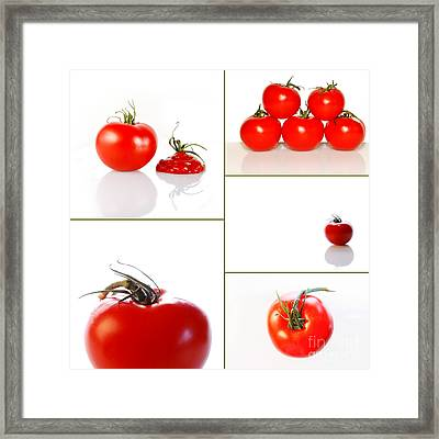 Tomatoes On White Framed Print by Sabine Jacobs