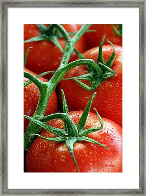 Tomatoes Framed Print by Ron Sumners