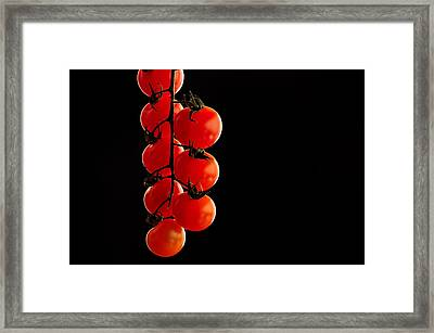 Tomatos Framed Print