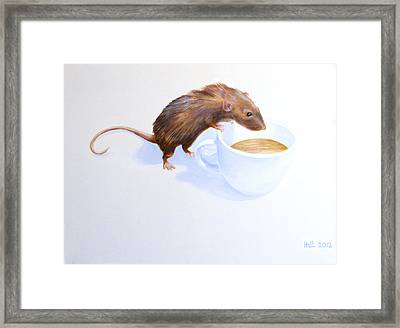Tommy Framed Print by Kevin Hill