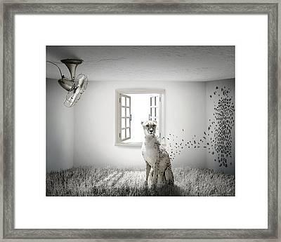 Tomorrow Framed Print by Vanessa Bates