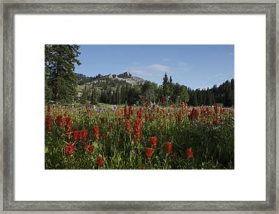 Tony Grove Lake Framed Print