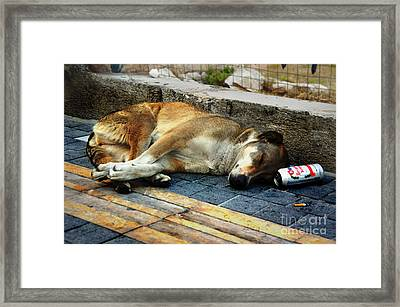 Too Drunk To Go Home Framed Print