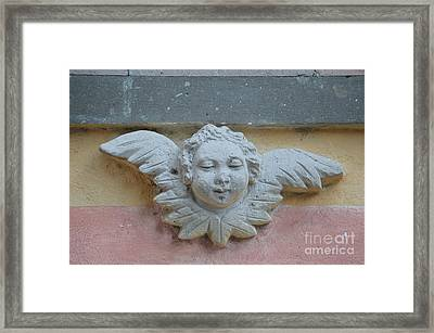 Too Fat To Fly Framed Print