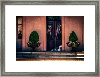 Too Hot To Fetch Framed Print