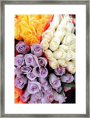 Too Lovely Framed Print
