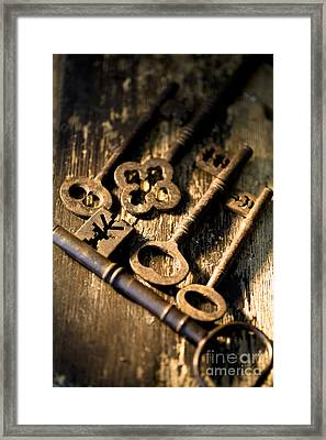 Too Many Secrets Framed Print by Jan Bickerton