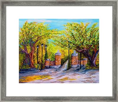 Toomer's Corner Oaks Framed Print