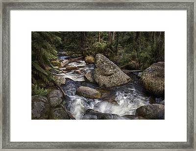 Framed Print featuring the photograph Tooronga River by Kim Andelkovic