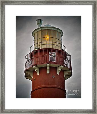 Top Of Barney 2007 - Hawk's Perch Framed Print