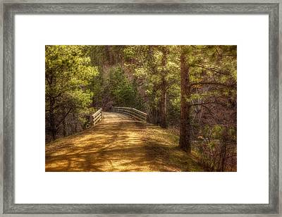 Top Of The Bridge Framed Print by Michele Richter