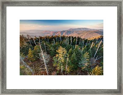 Top Of The Dome Framed Print by Scott Moore