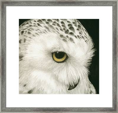 Topaz In The Snow Framed Print by Pat Erickson