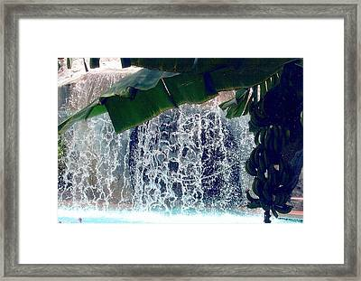 Framed Print featuring the photograph Topical Water Fall by Judy Palkimas