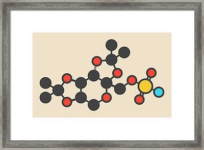 Topiramate Epilepsy Drug Molecule Framed Print by Molekuul