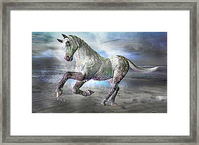 Topsail Gallop Framed Print by Betsy Knapp