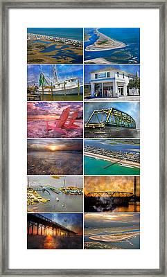 Topsail Glory Framed Print by Betsy Knapp