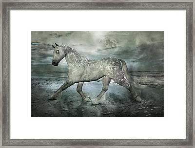 Topsail Island The Gray  Framed Print by Betsy Knapp
