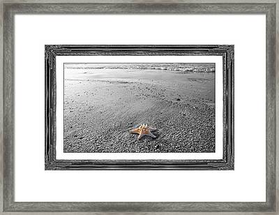 Topsail Island The Lone Star Framed Print by Betsy Knapp