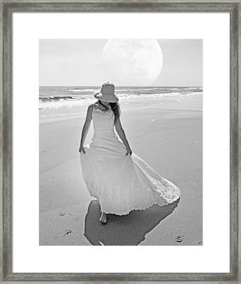 Topsail Paradise Framed Print
