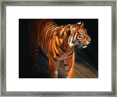 Framed Print featuring the digital art Torch Tiger 4 by Aaron Blaise