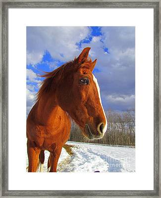 Tori Girl Framed Print