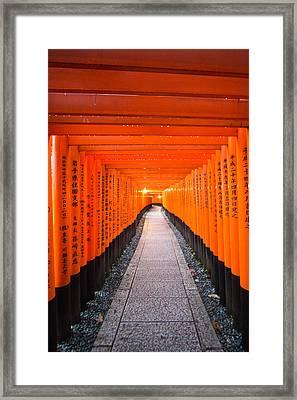 Torii Gate Tunnel In Fushimi Inari Shrine Framed Print by Laura Palmer