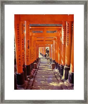 Torii Gates At The Fushimi Inari Shrine Framed Print