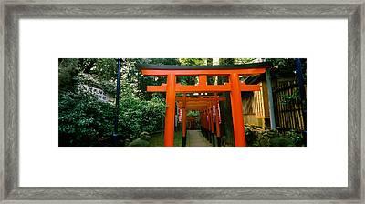 Torii Gates In A Park, Ueno Park Framed Print