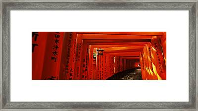 Torii Gates Of A Shrine, Fushimi Framed Print