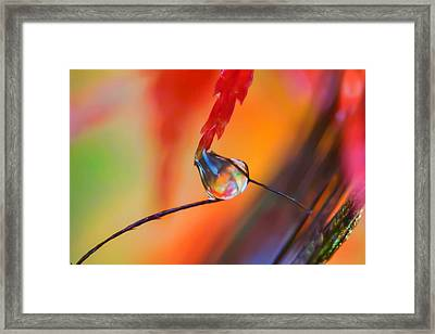 Torn Between Two Worlds Framed Print
