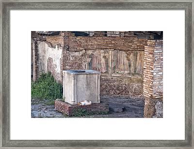 Torre Argentina Roman Cat Sanctuary Framed Print by Melany Sarafis