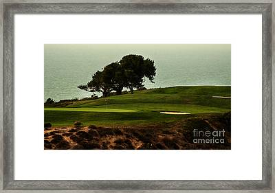 Torrey Pines Golfcourse Framed Print by Darleen Stry