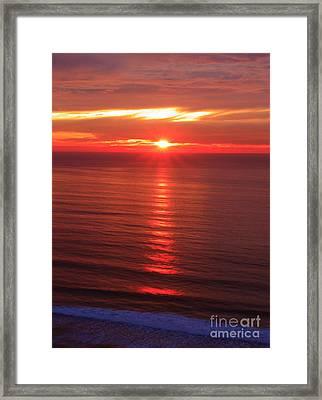 Torrey Pines Starburst Framed Print