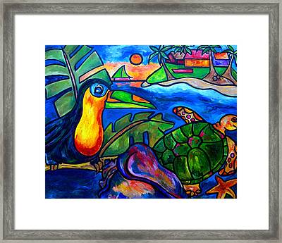 Tortuga Eco Tour Framed Print by Patti Schermerhorn