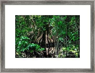 Tortuguero River Framed Print by Gary Keesler