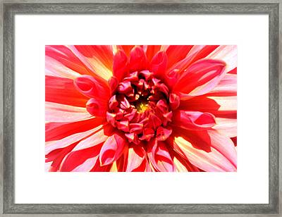 Total Victory Framed Print by Sarah OToole