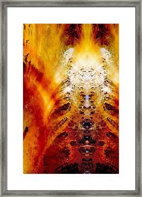 Totem Of The Tholian Framed Print