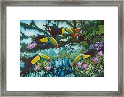 Toucan Jungle Framed Print by Larry Taugher