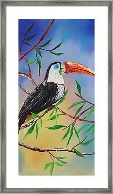 Toucan Framed Print