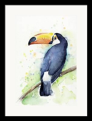 Tropical Bird Art Framed Prints