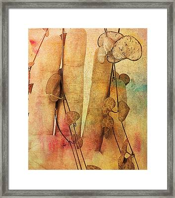 Touch Me Soft Framed Print