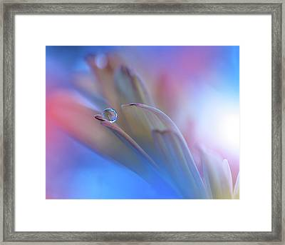Touch Me Softly... Framed Print