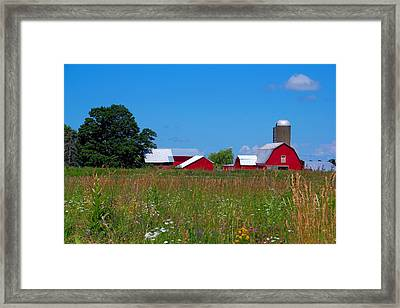 Framed Print featuring the photograph Touch Of Color by Dave Files
