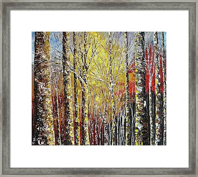 Touch Of Gold Framed Print by Shilpi Singh
