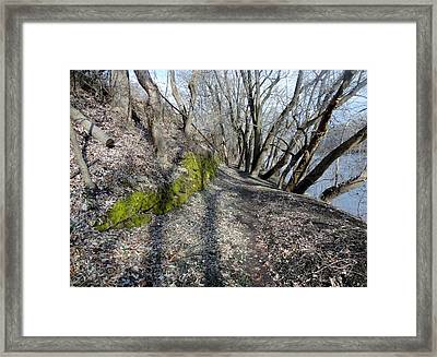 Framed Print featuring the photograph Touch Of Green by Michael Porchik