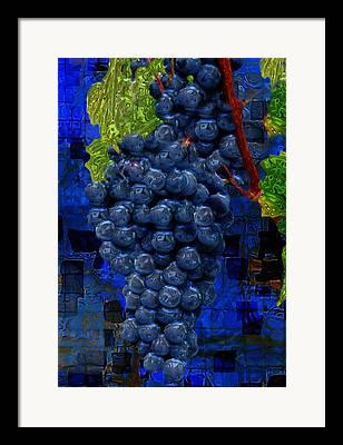 Woody Vine Framed Prints