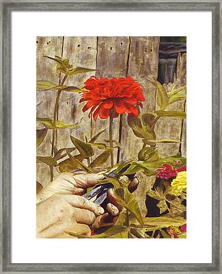 Framed Print featuring the painting Touch Of The Master's Hand by Rick Fitzsimons