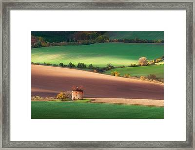 Touch Of The Sun Framed Print