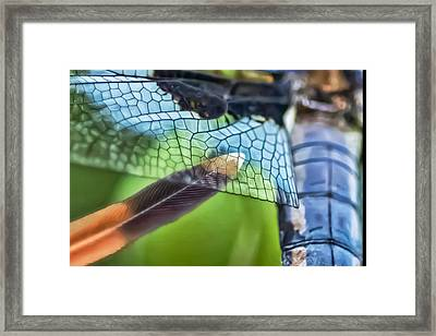 Touch The Fantasy Framed Print